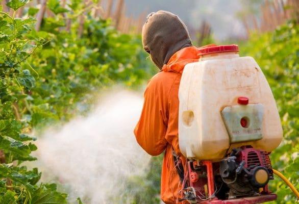 pesticides bad for health