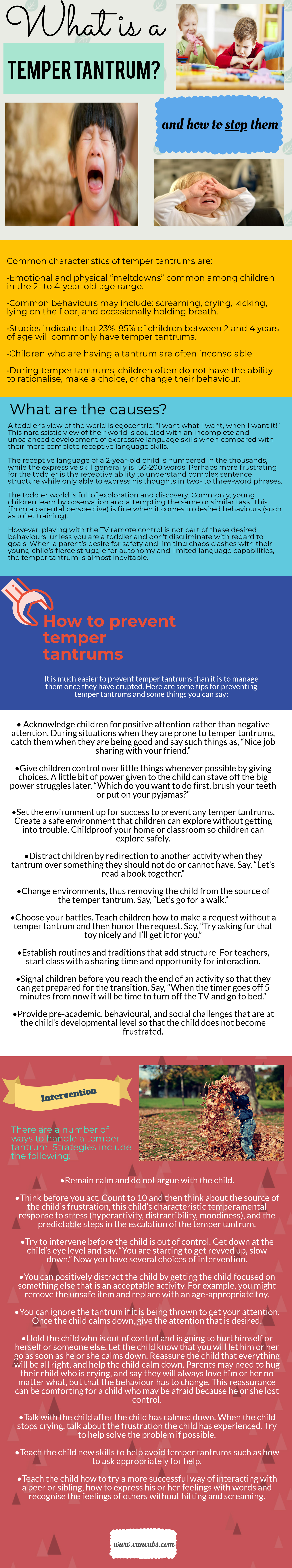 how to deal with temper tantrums